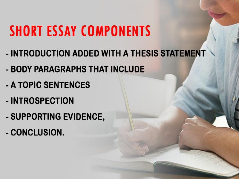 Short Essay Components