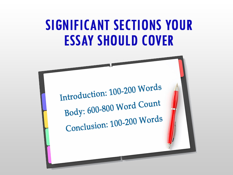 significant sections your essay should cover