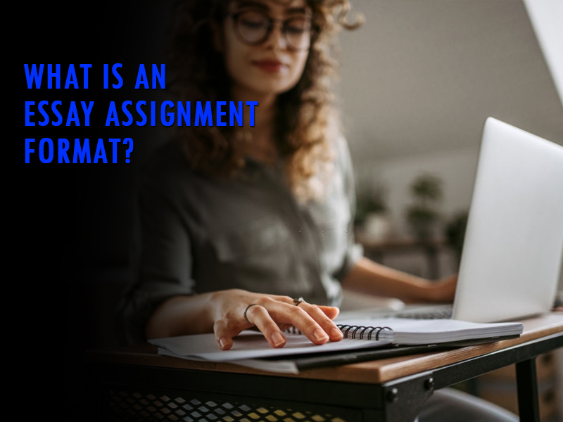 What is an essay assignment format